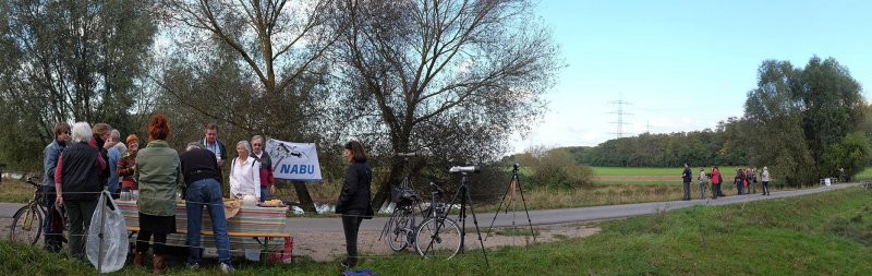 Landbachaue - Birdwatching 04