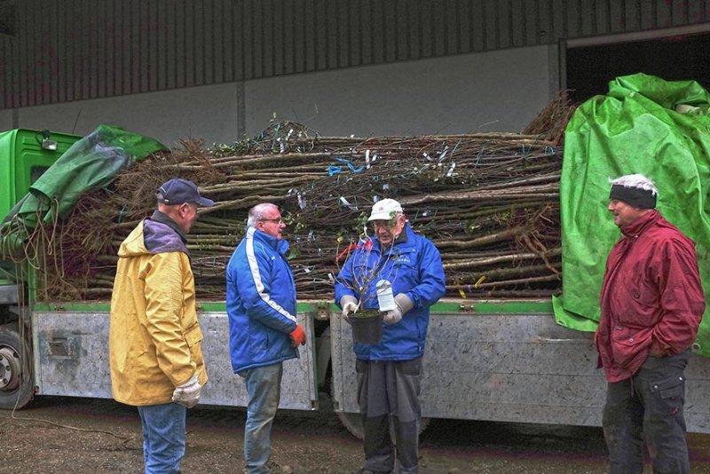 Vorbereitung NABU-Obstbaumaktion 04