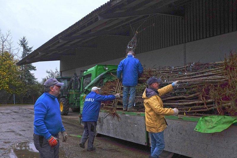 Vorbereitung NABU-Obstbaumaktion 05