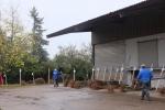 Vorbereitung NABU-Obstbaumaktion 11
