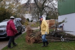 Vorbereitung NABU-Obstbaumaktion 12