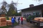 Vorbereitung NABU-Obstbaumaktion 02