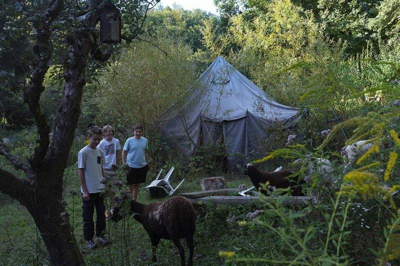 NAJU Gruppe bei den Schafen 03