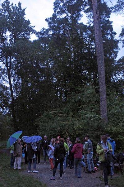 Fledermausnacht am Waldweiher 3