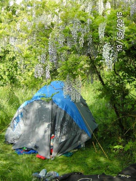 01 Camping in Eckis Garten