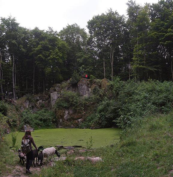 Schaftrieb - Wassersteinbruch 06