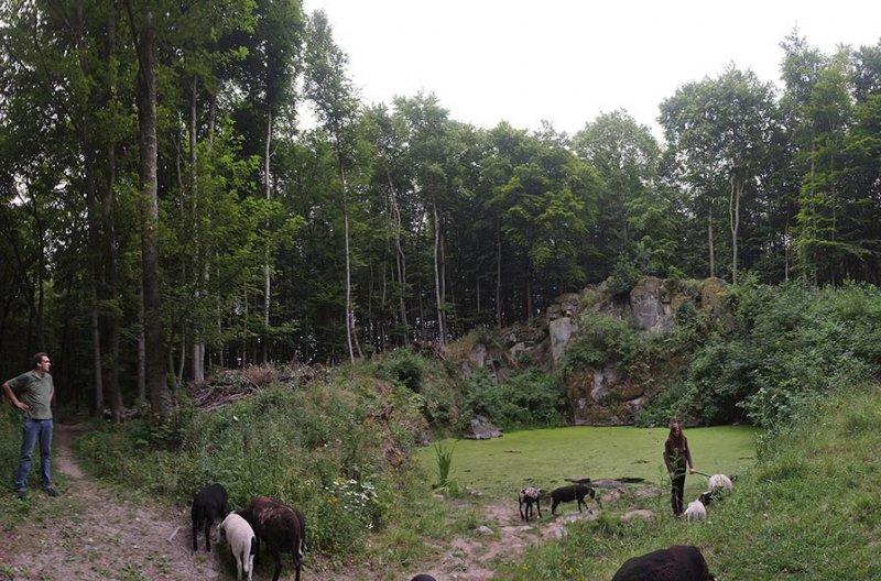 Schaftrieb - Wassersteinbruch 07