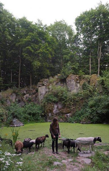 Schaftrieb - Wassersteinbruch 09
