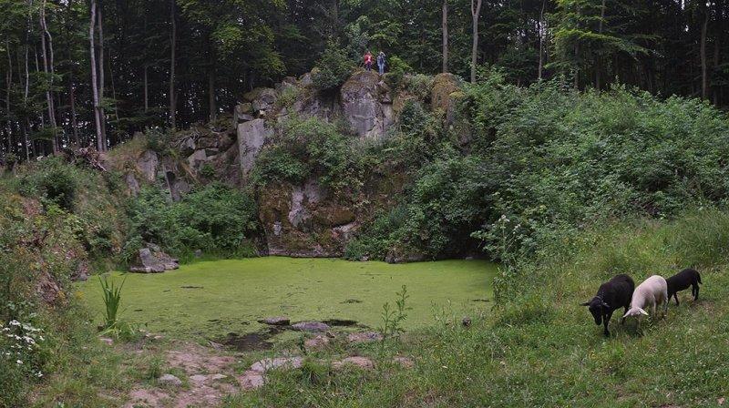 Schaftrieb - Wassersteinbruch 03