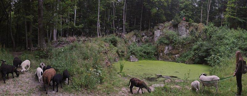Schaftrieb - Wassersteinbruch 05