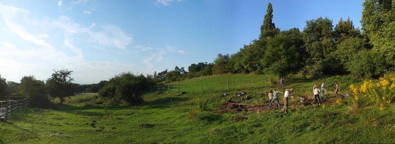 Hermeline am Regenbogenteich 11