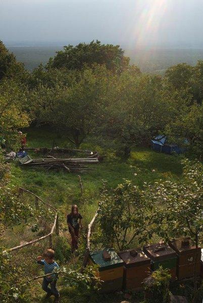 Erntefest der Wühlmäuse - Garten 1