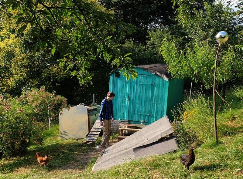 Hühnerleiter 6 10x14s