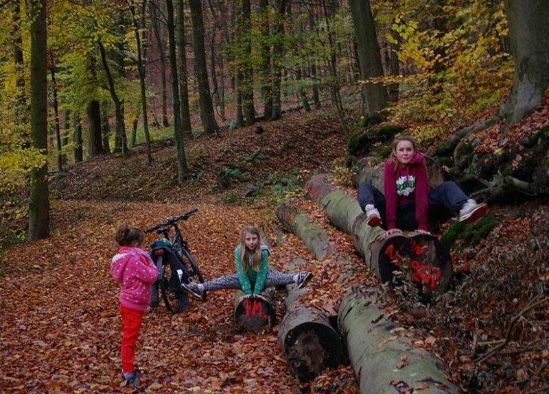 Sternwanderung - Gymnastik im Wald 07