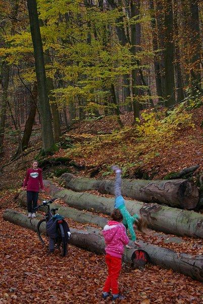 Sternwanderung - Gymnastik im Wald 08