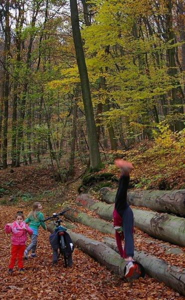 Sternwanderung - Gymnastik im Wald 09