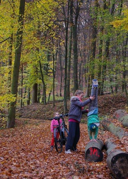 Sternwanderung - Gymnastik im Wald 02