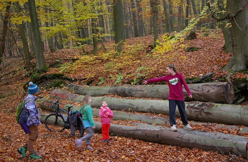 Sternwanderung - Gymnastik im Wald 11