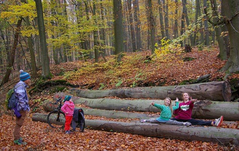Sternwanderung - Gymnastik im Wald 14