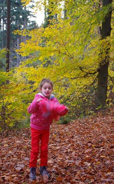Sternwanderung - Gymnastik im Wald 03