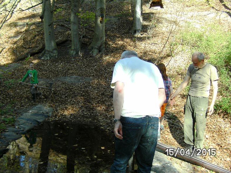 04 Waldwölfe am Wühlmausweiher
