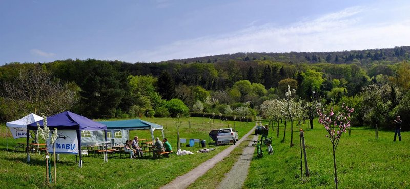 Kirschgartenfest Aufbau 8