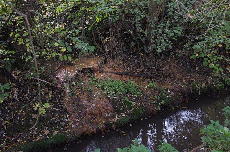 Wasserwandern am Beerbach 10 Abwassereinleitung