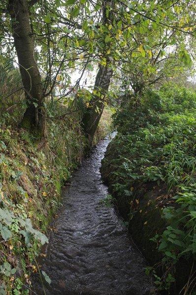 Wasserwandern am Beerbach 02 eingefasster Bach