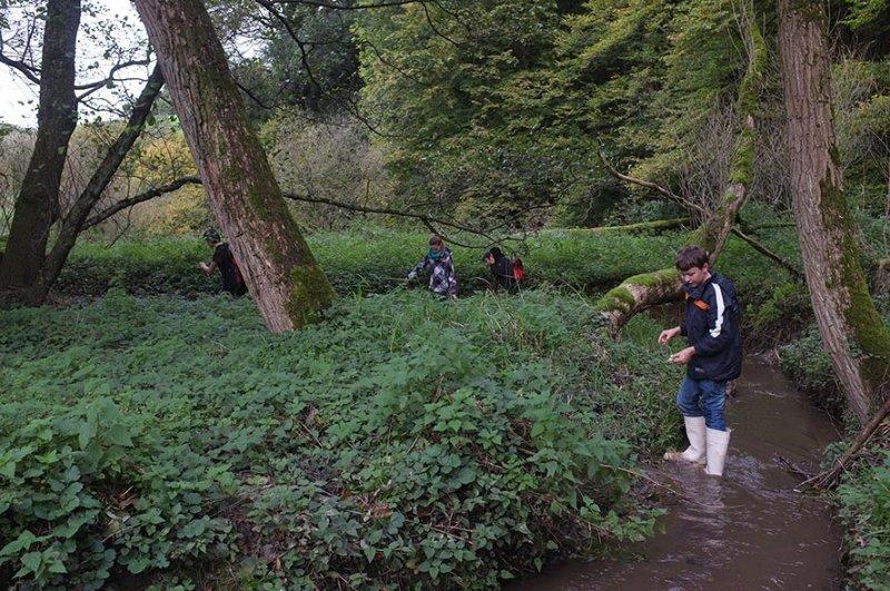 Wasserwandern am Beerbach 23