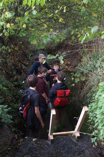 Wasserwandern am Beerbach 04 Sohlschwelle