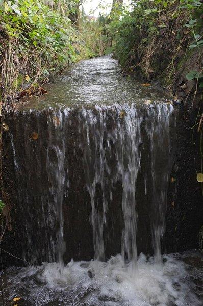 Wasserwandern am Beerbach 05 Sohlschwelle