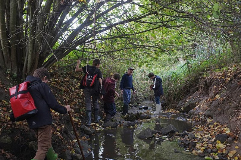Wasserwandern am Beerbach 08
