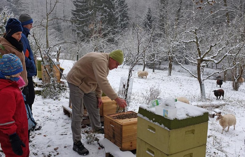 Winterbehandlung 03