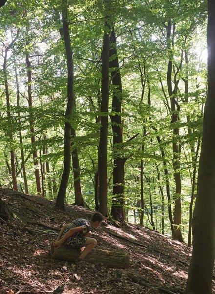 NAJUs im Wald - Rutschpartie 3