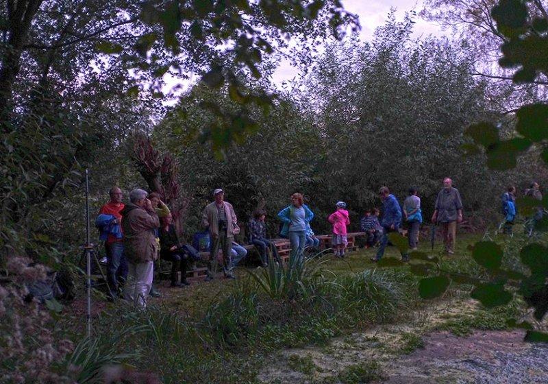 Fledermausnacht am Mittelbachteich 2