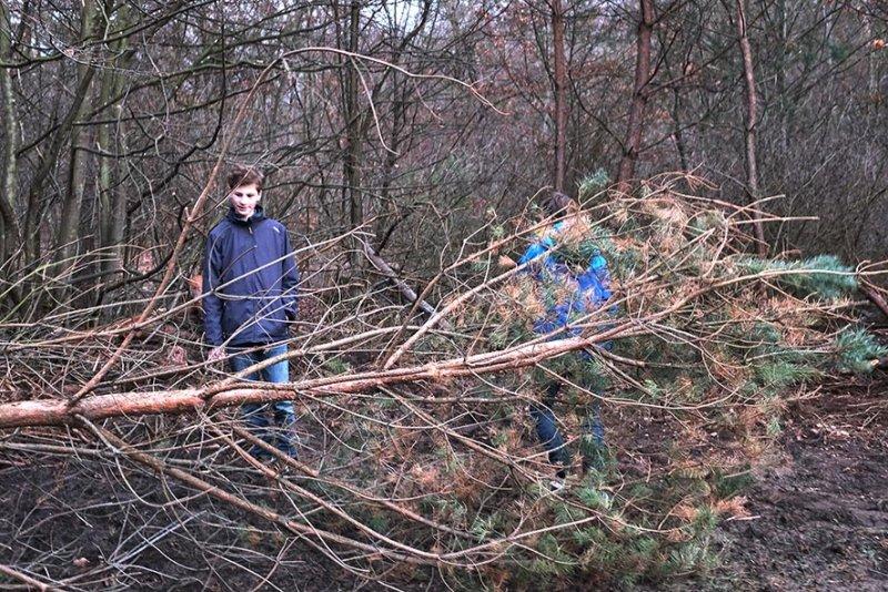 Naturzaun am Waldweiher Malcher Tanne - Baum fällt 3