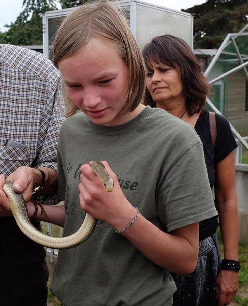 Schlangenbeschwörer 11