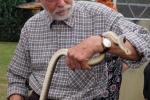 Schlangenbeschwörer 07