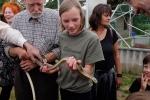 Schlangenbeschwörer 09