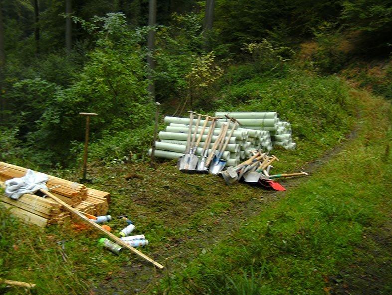 Pflanzaktion der NAJU im Alsbacher Wald 02