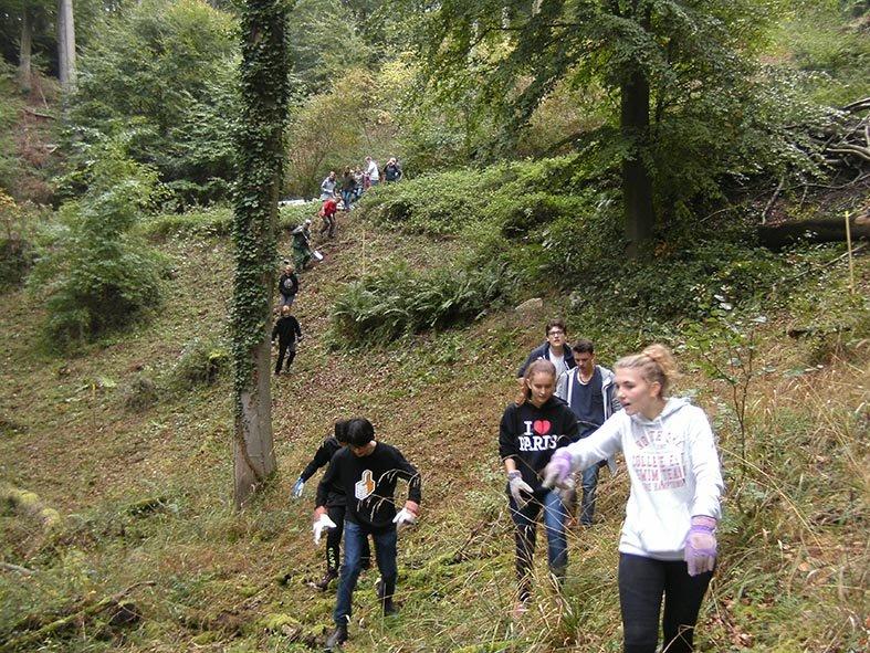 Pflanzaktion der NAJU im Alsbacher Wald 08