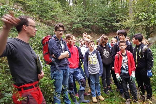 Pflanzaktion der NAJU im Alsbacher Wald 03