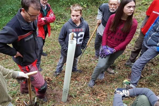 Pflanzaktion der NAJU im Alsbacher Wald 05
