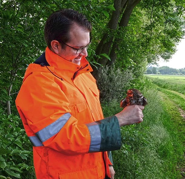 Steinkauz-Monitoring 36 10x10s
