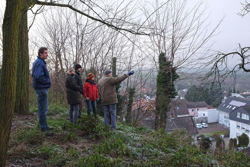 Dollacker Grundstück Horn mit Blick über Malchen