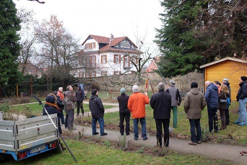 Obstschnitt-Praxis Altes Forstamt Jugenheim 02 10x15s
