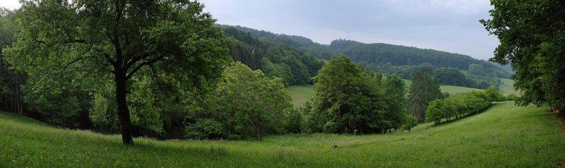 Kitzretter-Training Wallhausen 1