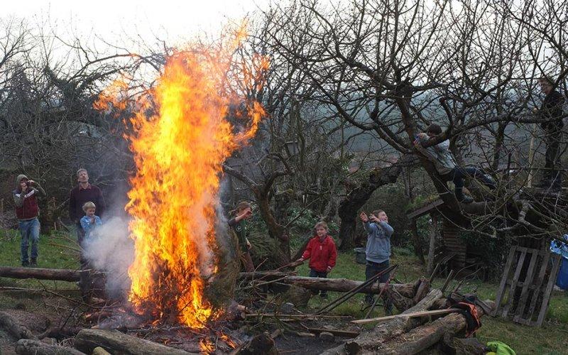 62 Weihnachtsbaum-Verbrennung