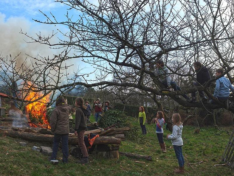 47 Weihnachtsbaum-Verbrennung