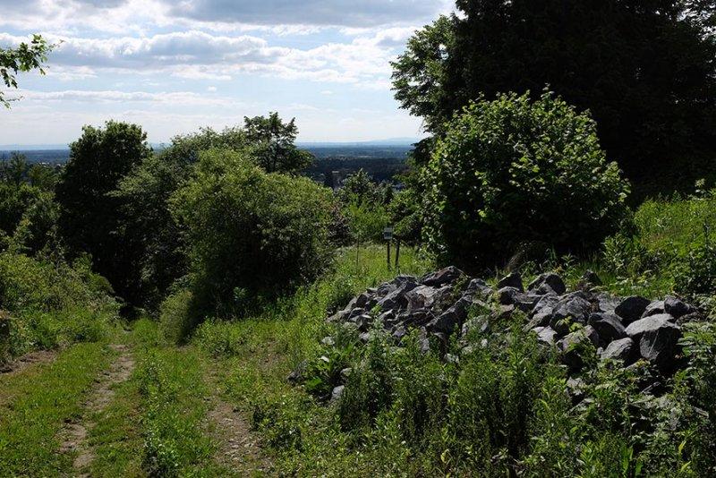 NABU-Grundstück Steinschüttung